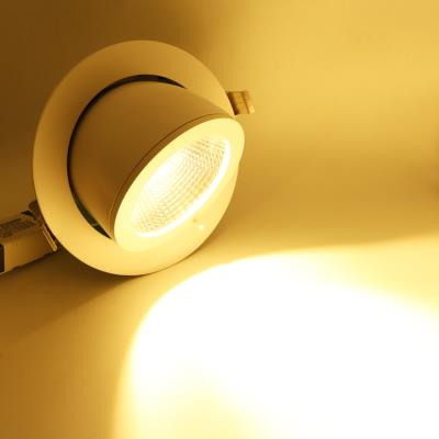 DOWNLIGHT LED SPOTS LED